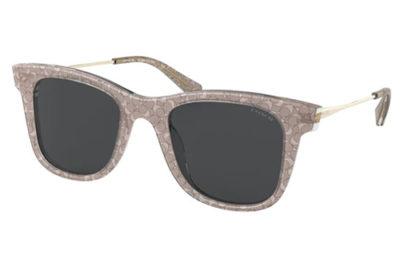Coach 8290  558887 50 Women's Sunglasses