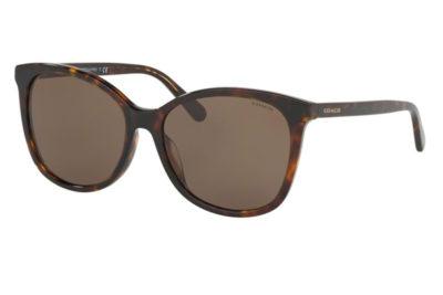 Coach 8271U  512073 57 Women's Sunglasses