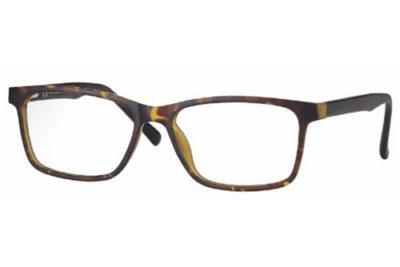 CentroStyle F021953163000 MATT DEMI 53 16-   Eyeglasses