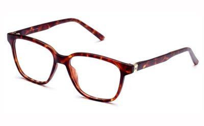 Pop Line IV050.092.000 havana brown 53 Eyeglasses