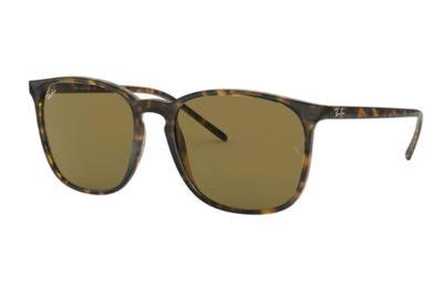 Ray-Ban 4387 710/73 56 Unisex Sunglasses