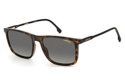 Carrera Carrera 231/s AB8/WJ HAVANA GREY 55 Unisex Sunglasses